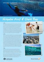 NingalooReefSharkBay-Reiseplan